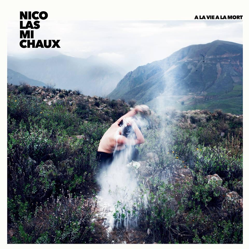 Nicolas Michaux JustMusic.fr