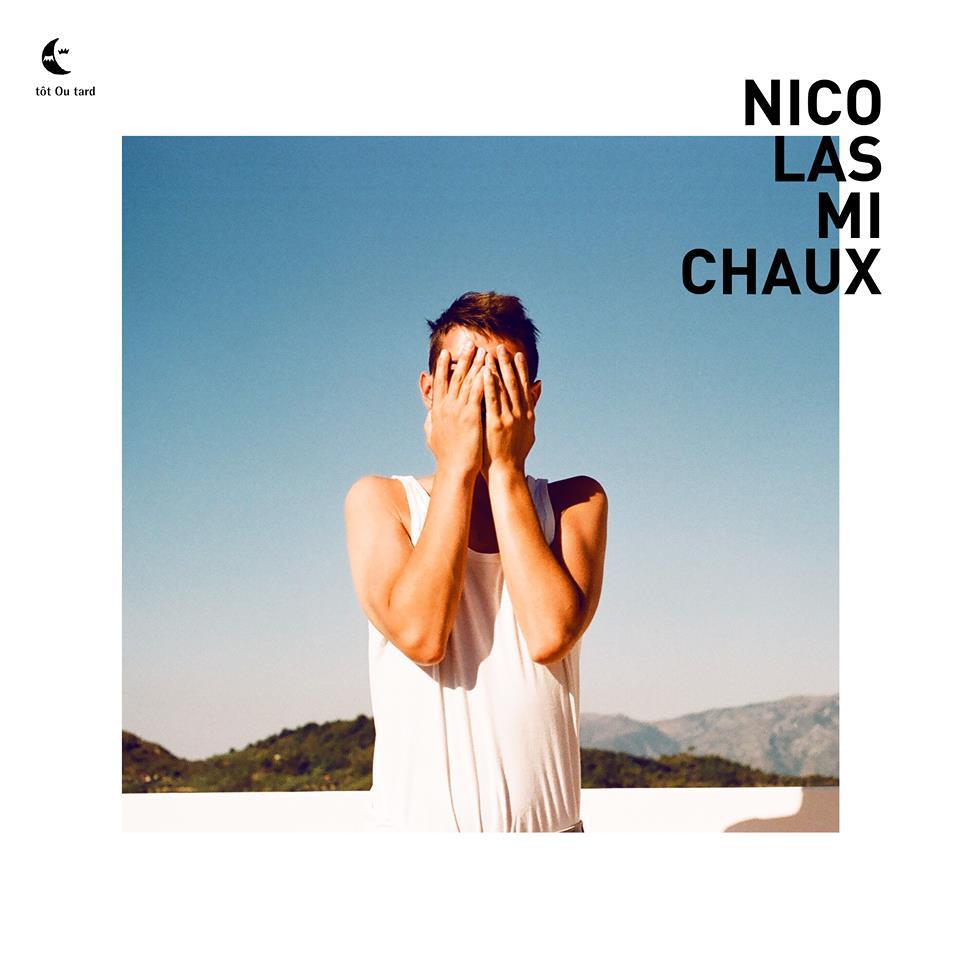 Nicolas Michaux JustMusic.fr 2