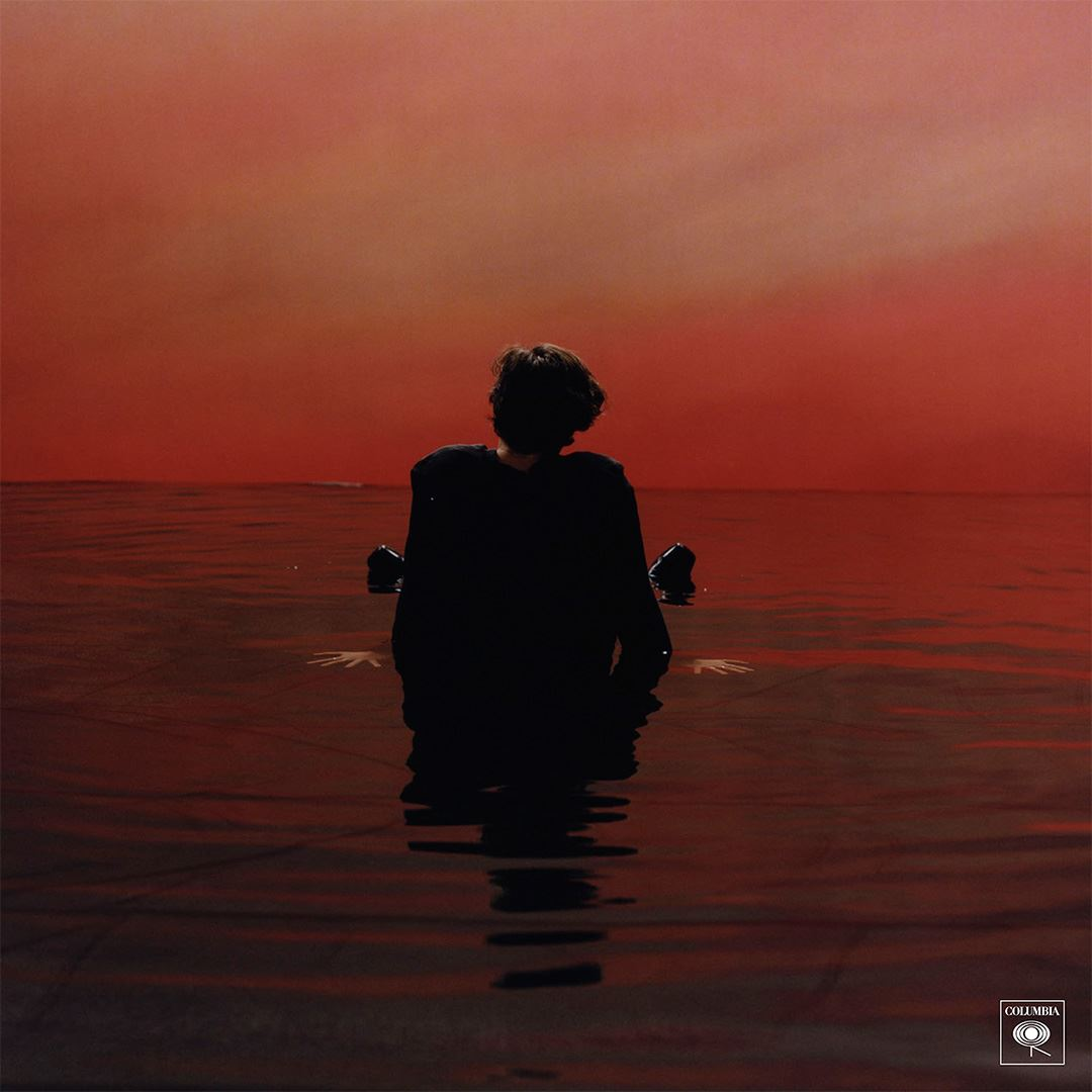 Harry Styles JustMusic.fr